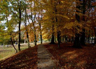 złota polska jesień w gryficach