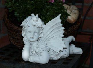 damy i anioły w trzebiatowie
