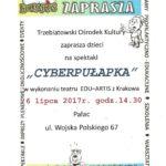 cyberpułapka - plakat
