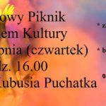 Piknik w Płotach - plakat