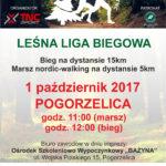 Leśna Liga Biegowa - plakat