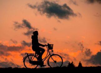 rowerowa gra terenowa