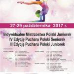 gimnastyka artystyczna - plakat