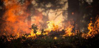 25. czerwca około godziny 21.00 w Mrzeżynie doszło do dwóch pożarów.