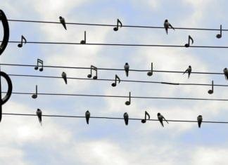 Gryfickie Lato Muzyczne w kolejnej odsłonie.