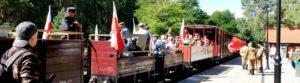 Piknik na dworcu w Rewalu