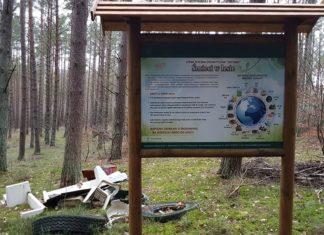 śmieci las