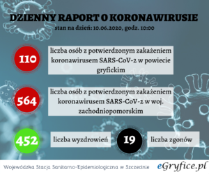wirus raport