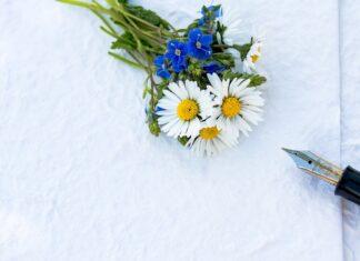 dyplom kwiaty